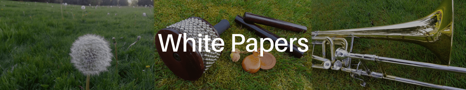 White Papers header